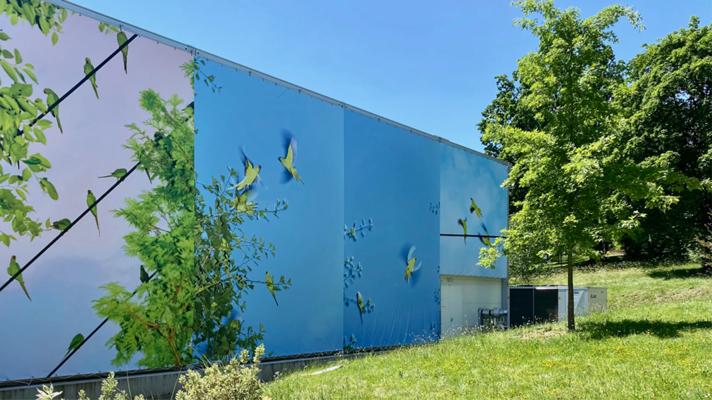 perle blossom - oiseau bleu