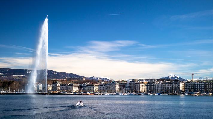 perle blossom - Genève, Conseil des normes internationales d'information sur la durabilité
